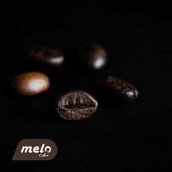 قهوه برزیل صددرصد روبوستا دارک(۲۵۰گرمی)