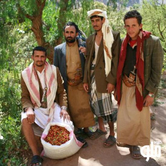 قهوه در یمن
