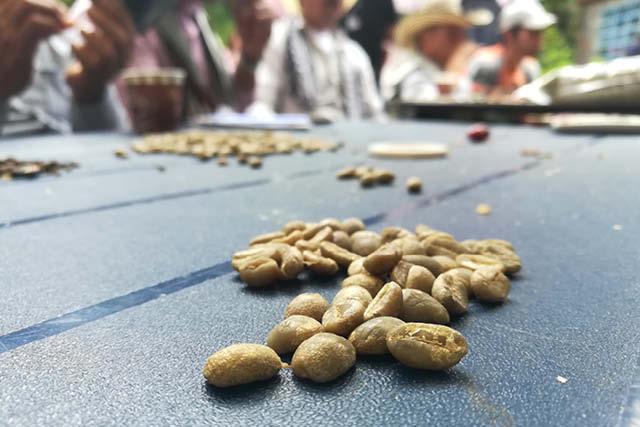 نمونه های درجه بندی در بویاکا کلمبیا