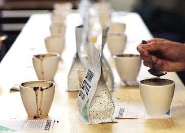تست کردن نمونه های قهوه