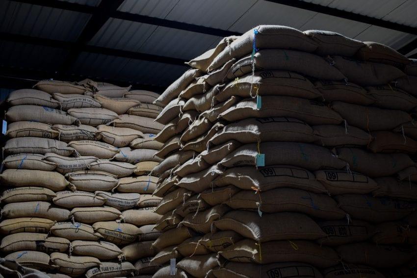 گونی های قهوه در انبار