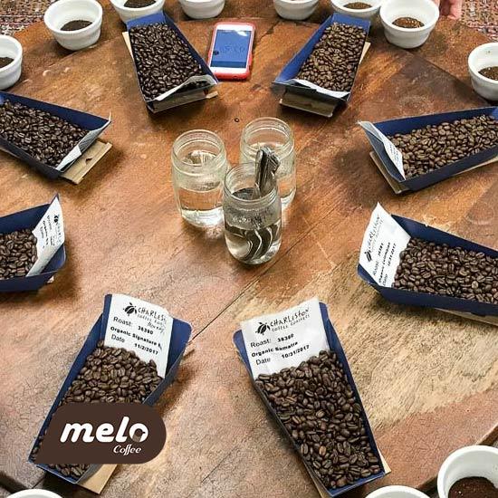 یک راهنما برای افراد مبتدی برای چشیدن و بوییدن قهوه و بهبود کام شما