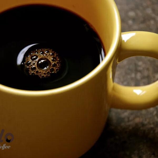 قهوه نیواورلئان (New Orleans Coffee)